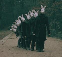Rabbitheads